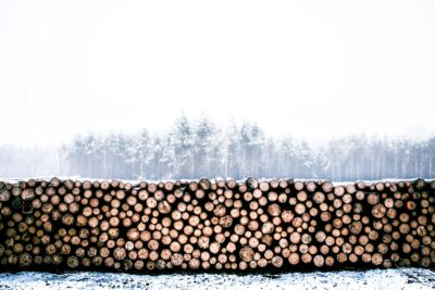 a wood pile that kids could ask what do you notice or wonder on a mathwalk